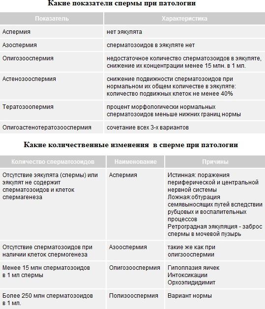 vliyaet-li-pereutomlenie-na-dvizhenie-spermatozoidov